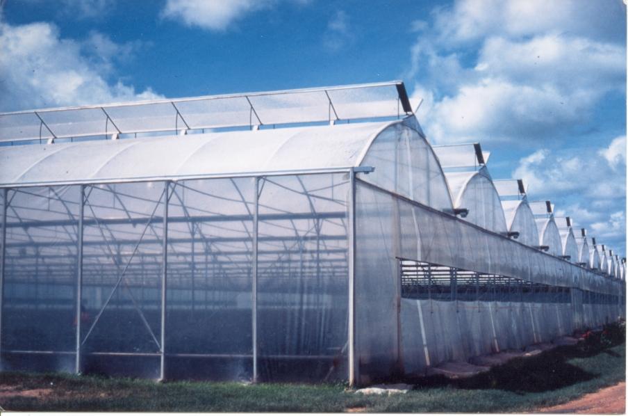 Sere cu deschidere dubla la culme MENATWORK AGRICOL - Poza 1