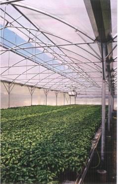 Sere cu deschidere dubla la culme MENATWORK AGRICOL - Poza 11