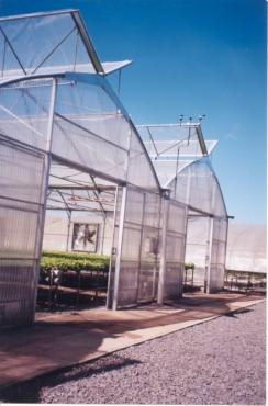 Sere cu deschidere dubla la culme MENATWORK AGRICOL - Poza 9
