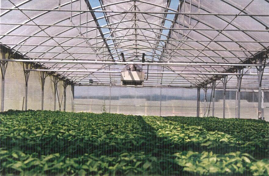 Sere cu deschidere dubla la culme MENATWORK AGRICOL - Poza 8