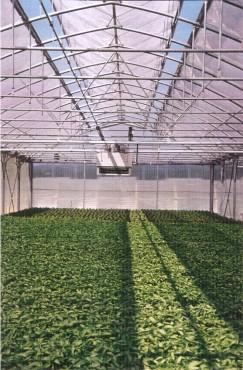 Sere cu deschidere dubla la culme MENATWORK AGRICOL - Poza 2