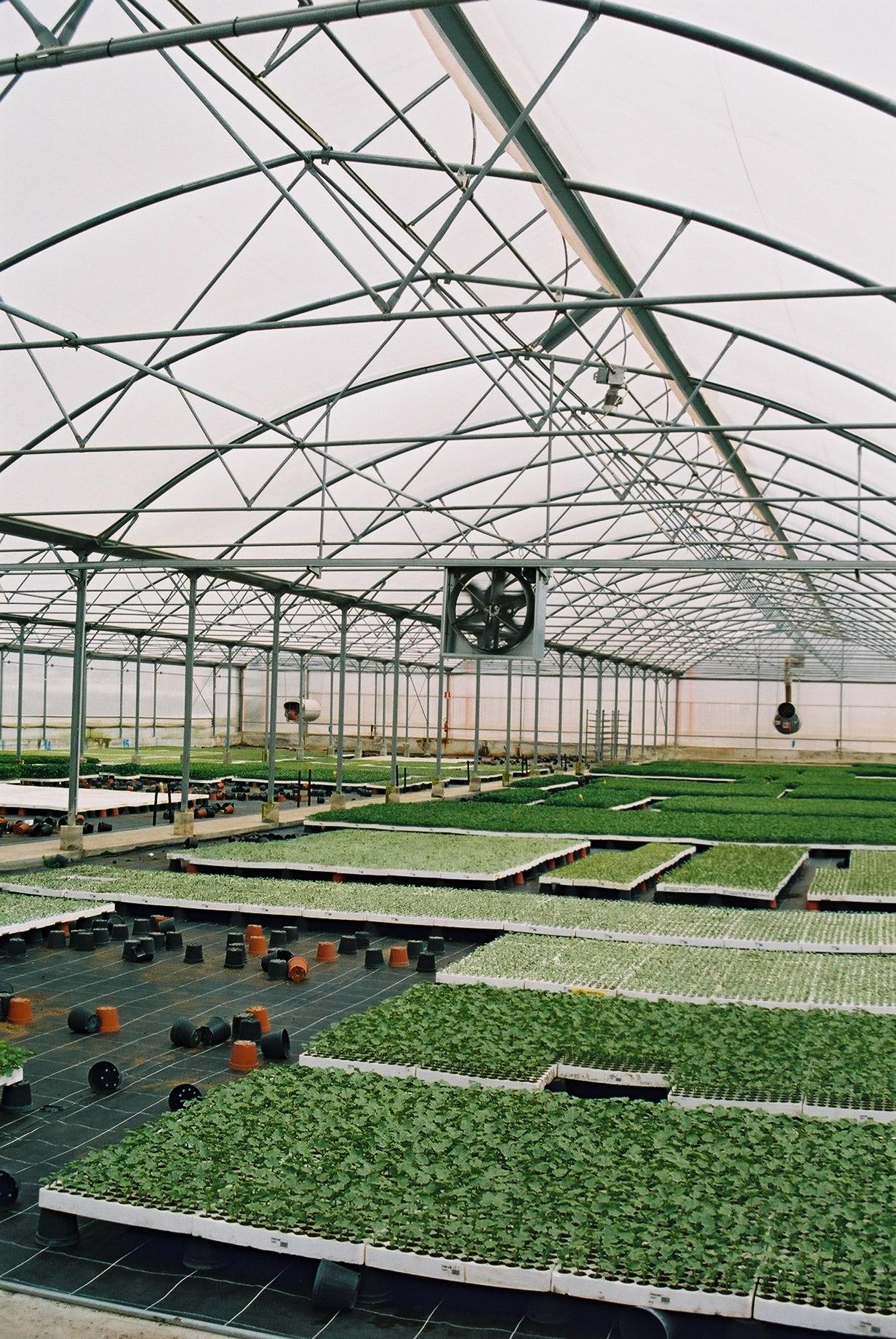 Sere cu deschidere simpla la culme MENATWORK AGRICOL - Poza 6
