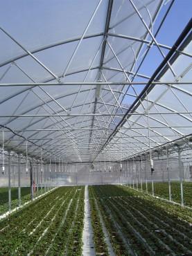 Sere cu deschidere simpla la culme MENATWORK AGRICOL - Poza 4