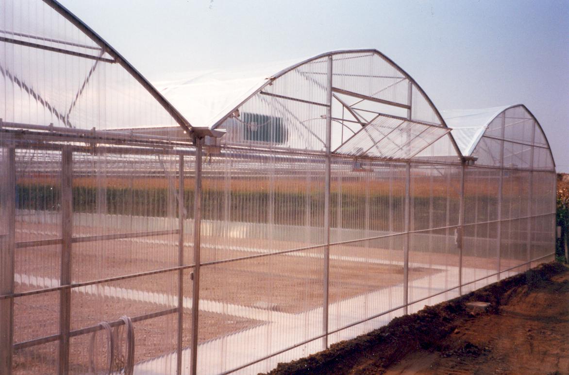 Sere cu deschidere tip rulou la peretii frontali MENATWORK AGRICOL - Poza 2