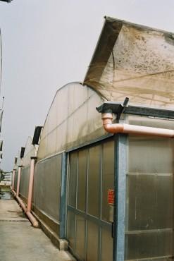 Sere cu deschidere tip rulou la peretii laterali MENATWORK AGRICOL - Poza 25