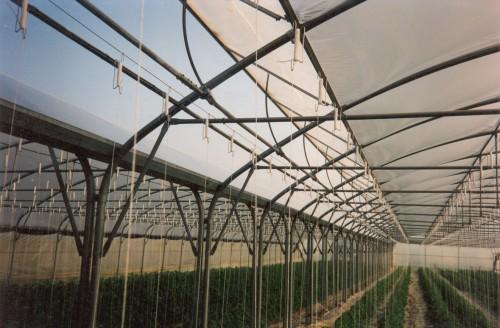 Sere cu deschidere tip rulou la peretii laterali MENATWORK AGRICOL - Poza 28