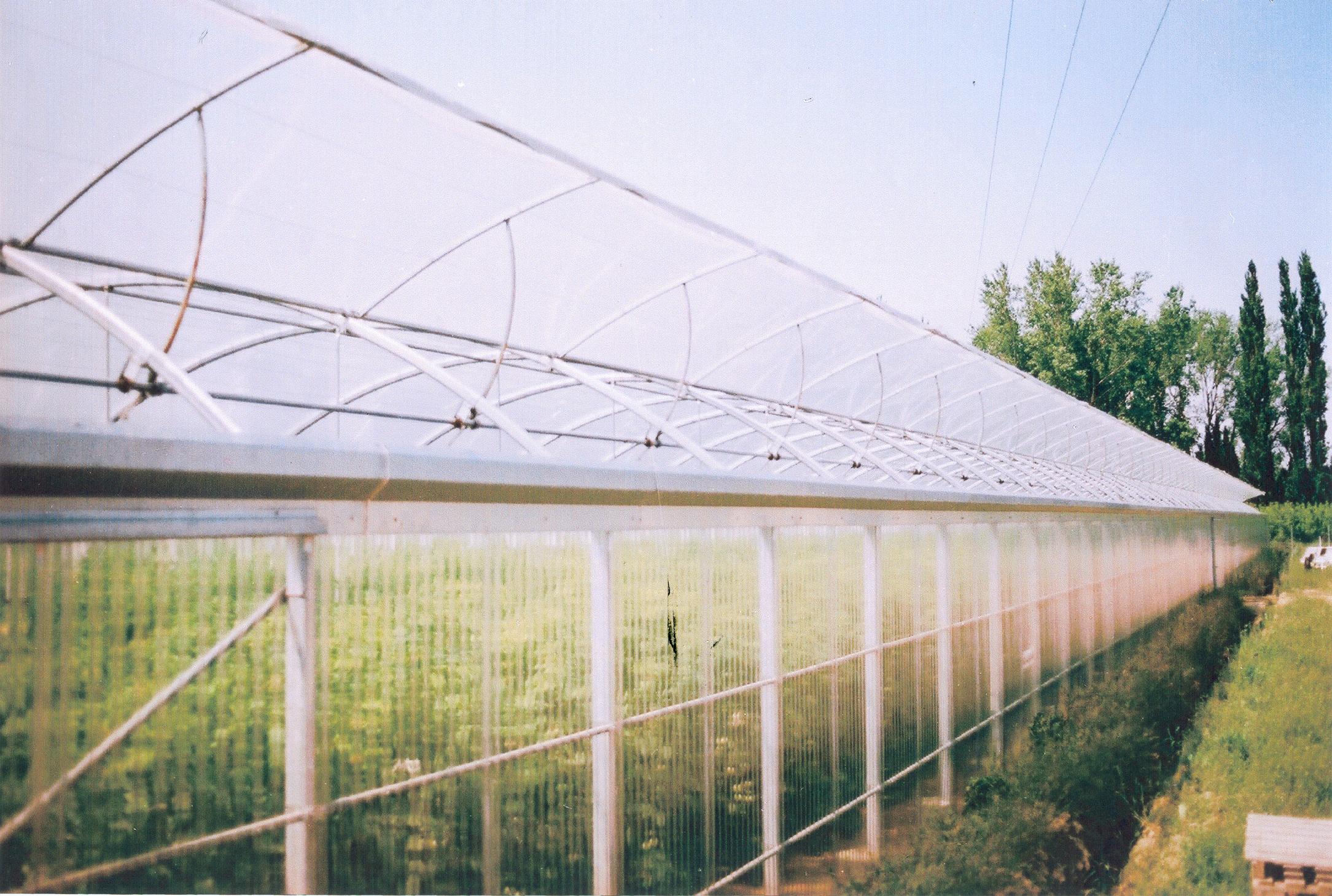 Sere cu deschidere tip rulou la peretii laterali MENATWORK AGRICOL - Poza 7