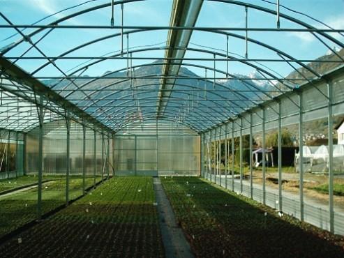 Sere, solarii MENATWORK AGRICOL - Poza 10