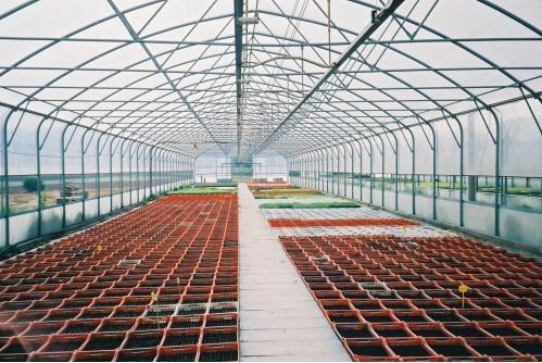 Sere, solarii MENATWORK AGRICOL - Poza 4