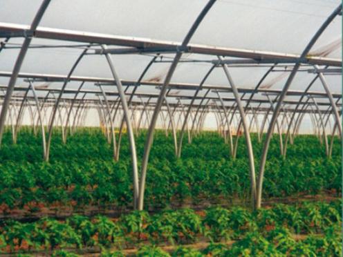 Sere, solarii MENATWORK AGRICOL - Poza 2