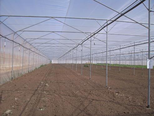 Solarii - Agronomia MENATWORK AGRICOL - Poza 3