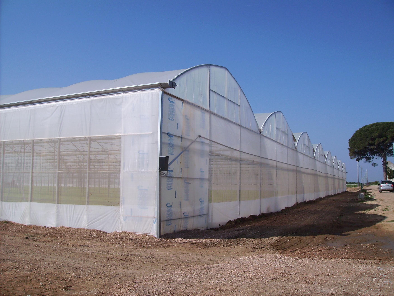 Solarii - Agronomia MENATWORK AGRICOL - Poza 5