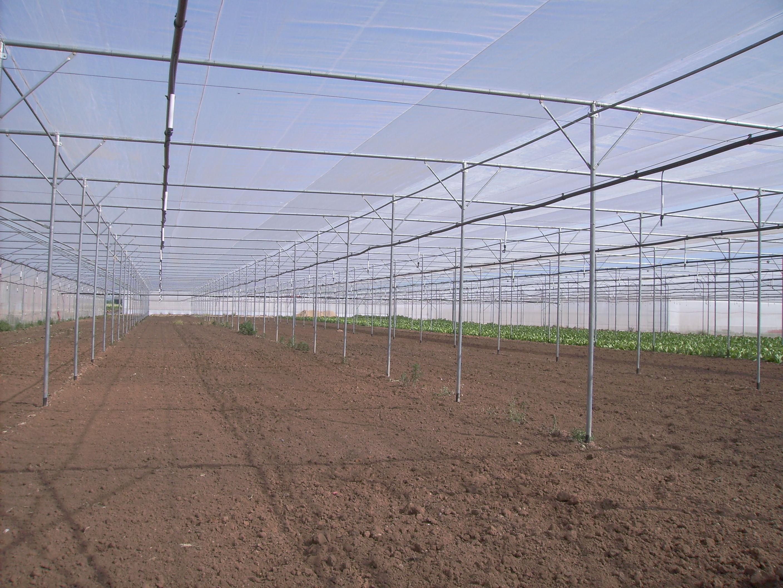 Solarii - Agronomia MENATWORK AGRICOL - Poza 6