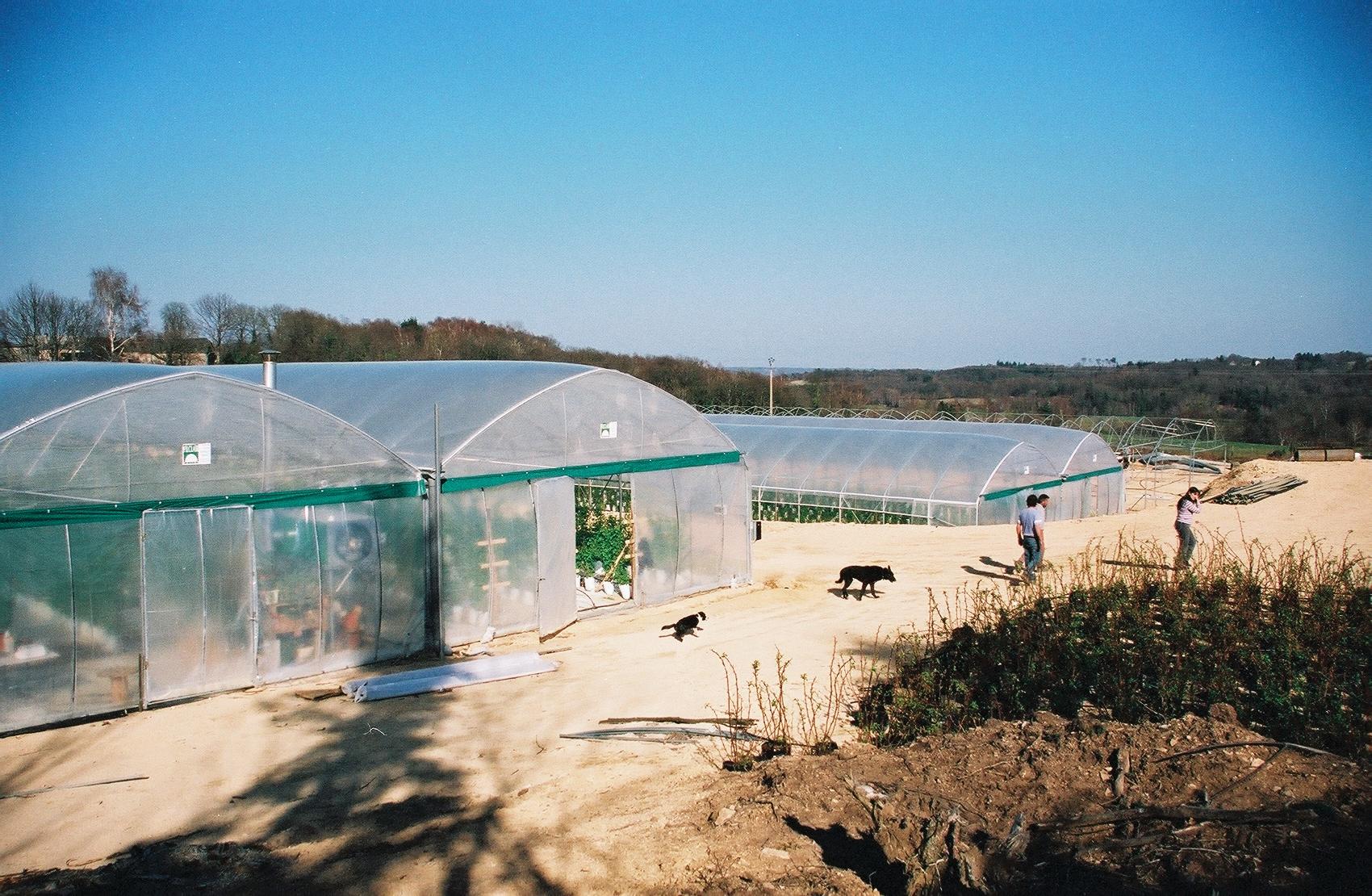 Solarii cu latime de 16.70m MENATWORK AGRICOL - Poza 5