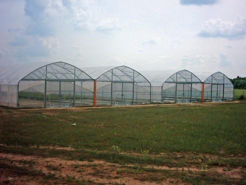 Solarii cu latime de 16.70m MENATWORK AGRICOL - Poza 6