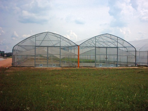 Solarii cu latime de 16.70m MENATWORK AGRICOL - Poza 8