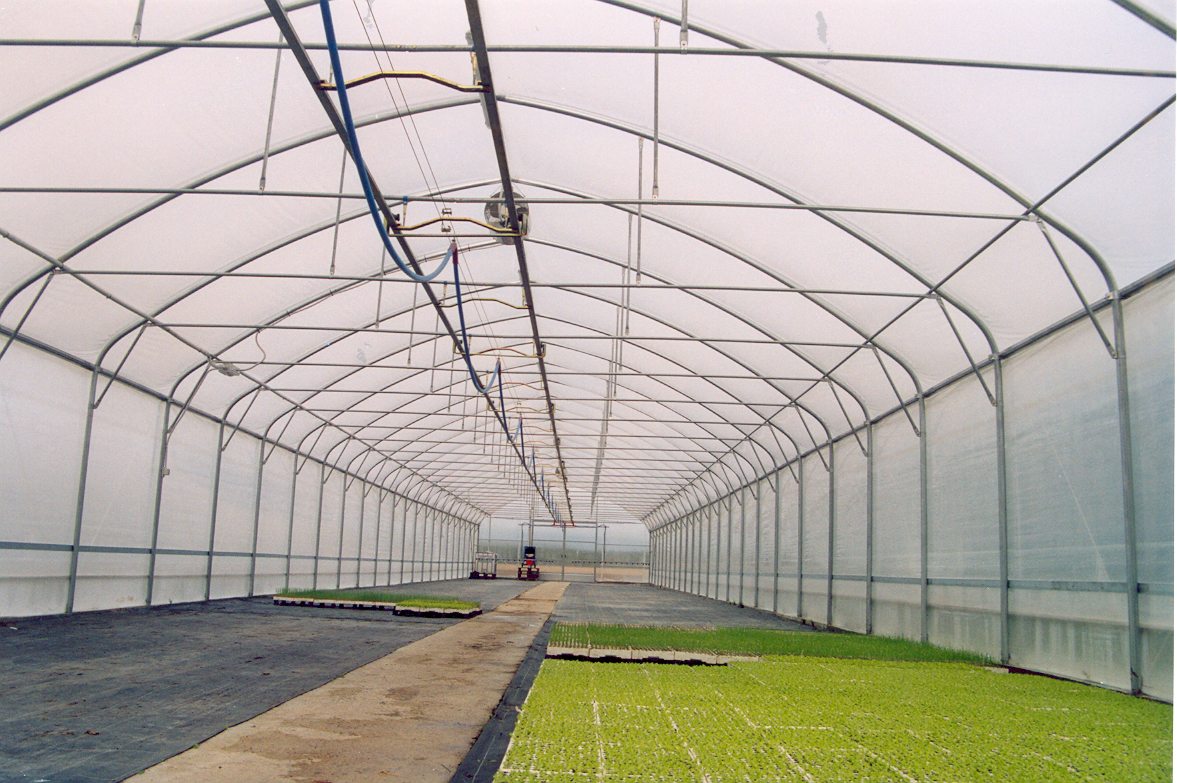 Solarii cu latime de 8.70m MENATWORK AGRICOL - Poza 6