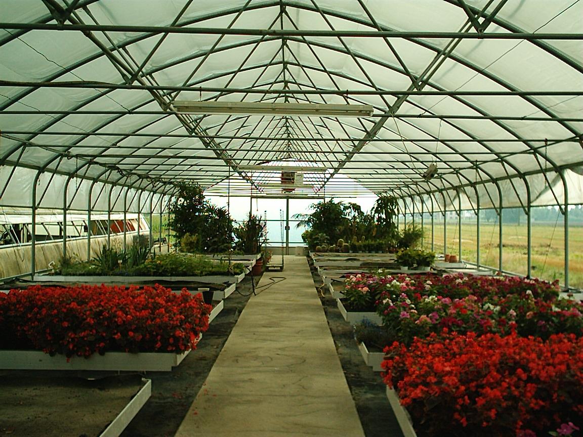 Solarii cu latime de 8.70m MENATWORK AGRICOL - Poza 5