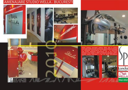 Lucrari, proiecte Amenajare Studio WELLA - Bucuresti  - Poza 2