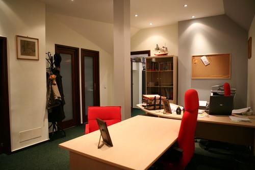 Lucrari, proiecte Restaurare Casa L - Bucuresti  - Poza 6