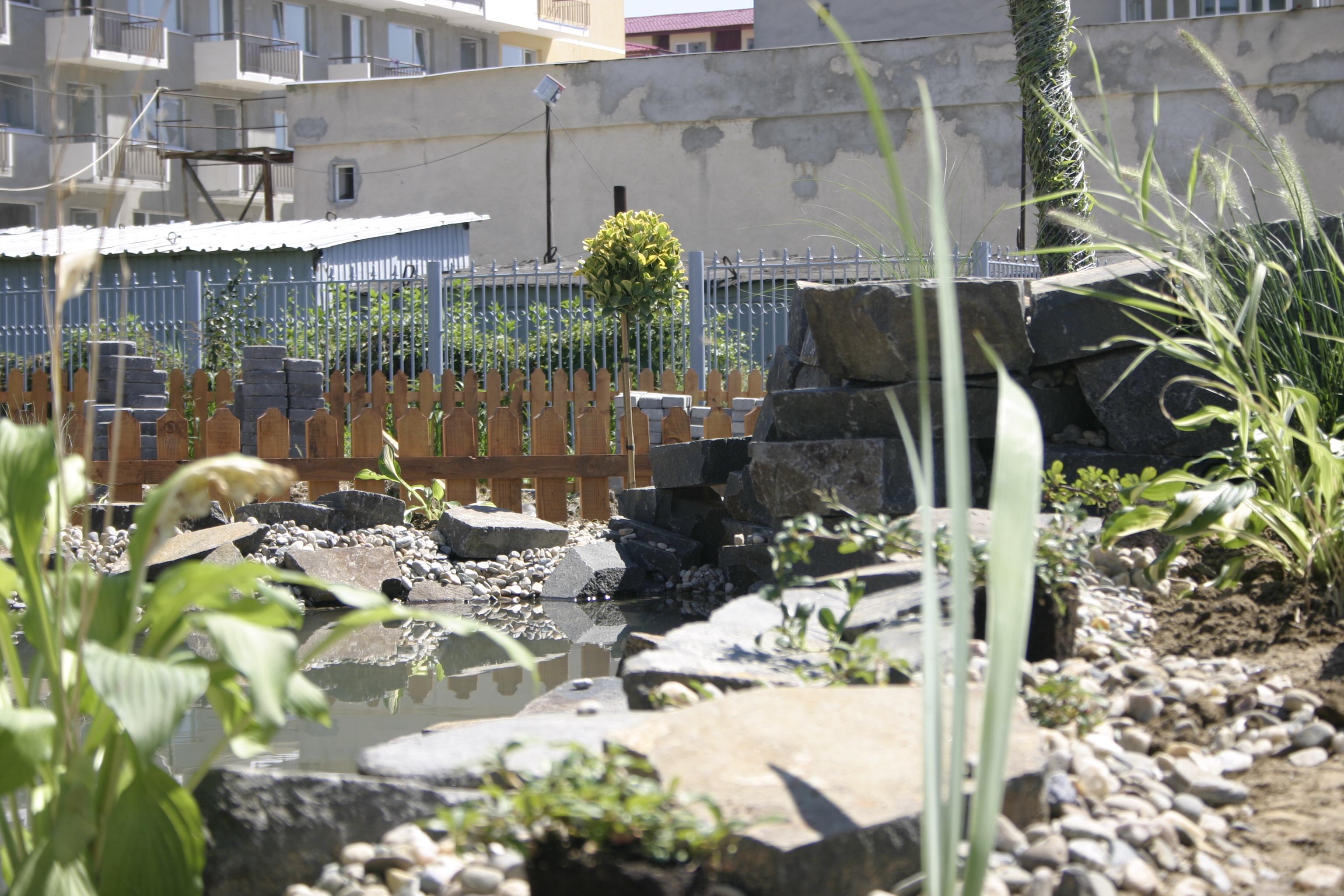 Amenajare gradina C - Baia Mare  - Poza 2