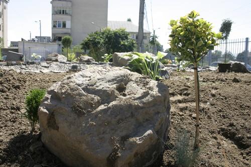 Lucrari, proiecte Amenajare gradina C - Baia Mare  - Poza 6