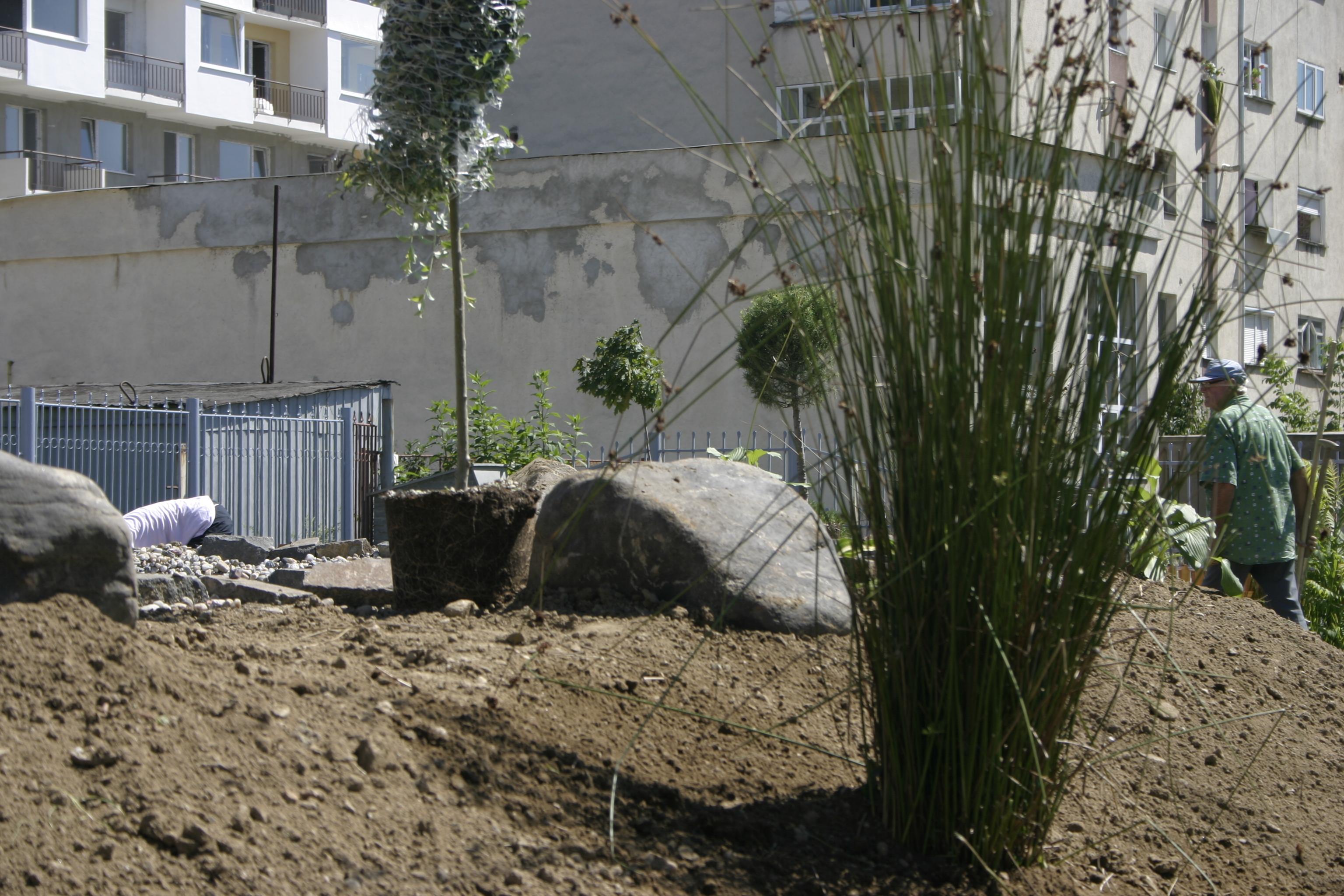 Amenajare gradina C - Baia Mare  - Poza 9