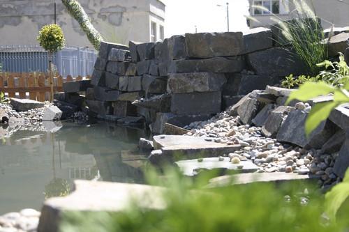 Lucrari, proiecte Amenajare gradina C - Baia Mare  - Poza 10