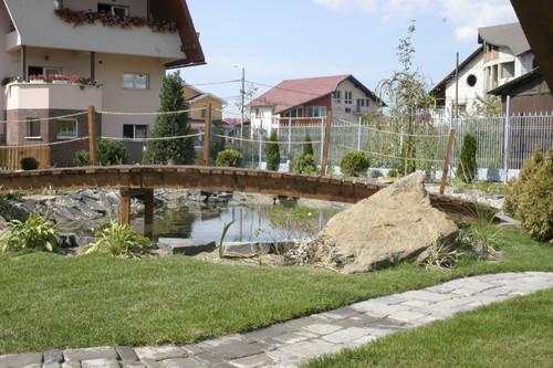 Lucrari, proiecte Amenajare gradina C - Baia Mare  - Poza 14