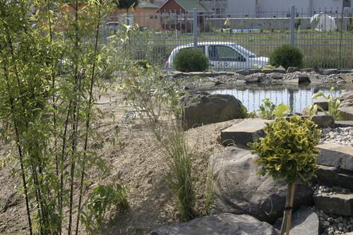 Lucrari, proiecte Amenajare gradina C - Baia Mare  - Poza 21