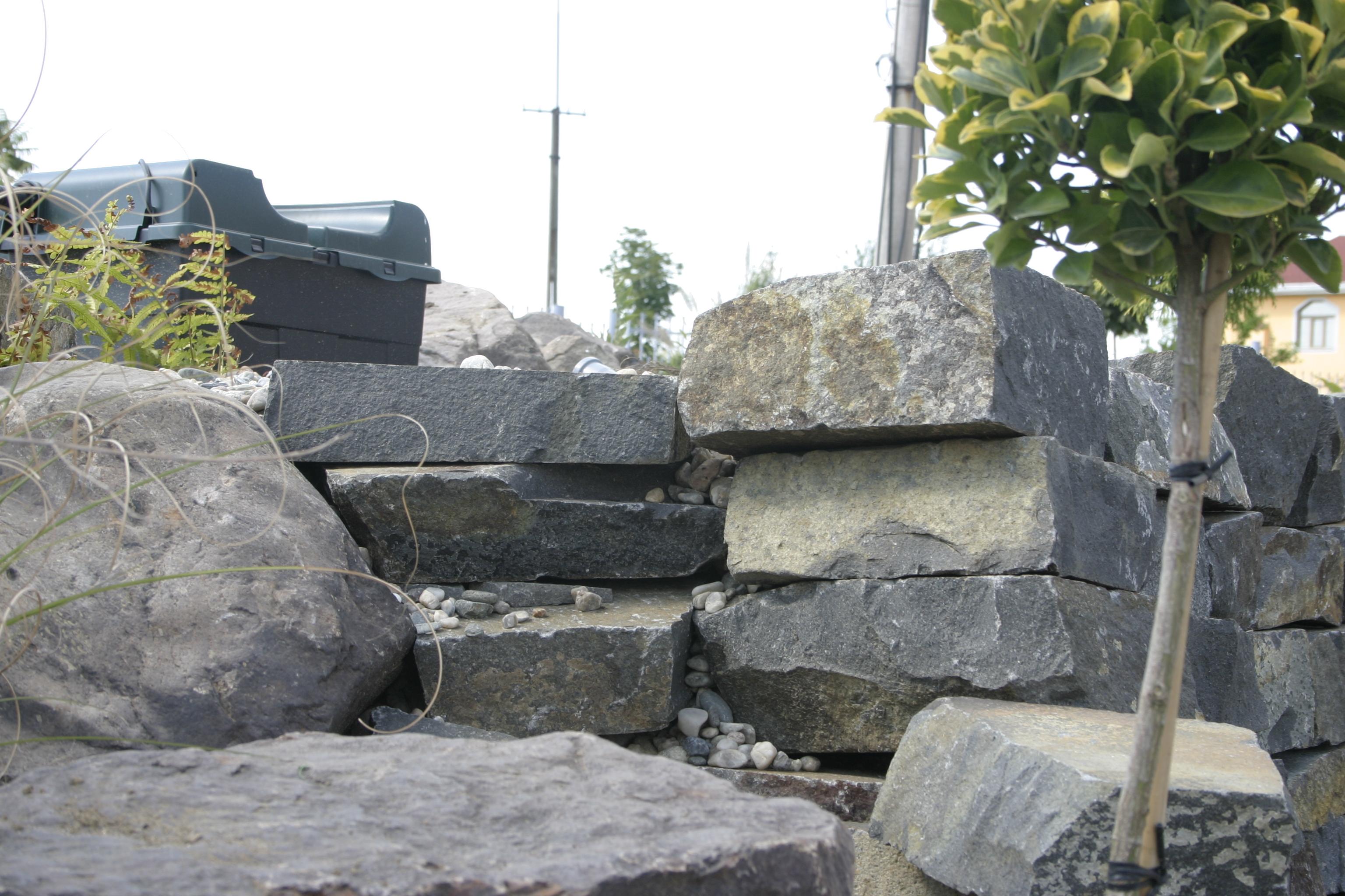 Amenajare gradina C - Baia Mare  - Poza 23