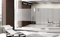Compartimentari de birouri TECHNO Walls sunt sisteme de compartimentari usoare, care permit planificarea si dezvoltarea unitara a unui spatiu de lucru complet, adaptabil la modificari functionale.  TECHNO GLASS WALL Este un sistem de pereti cu panou din sticla, continuu, considerat ca fiind cea mai eleganta forma de compartimentare, compusa din structura perimetrala din aluminiu extrudat, cu unul, doua sau trei canale si panouri din sticla duplex sau temperata, imbinate cu profile de junctiune din policarbonat transparent