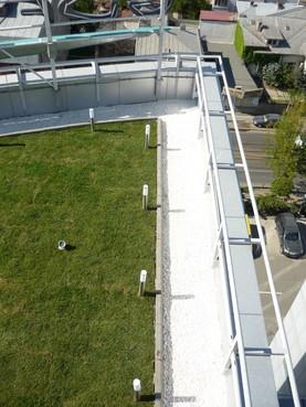 Cladire Birou Bucuresti SIMACEK Gardening - Poza 7