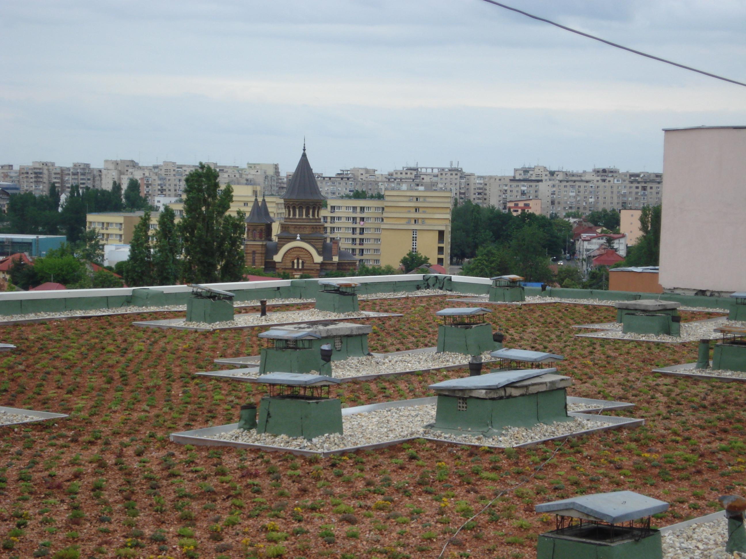 Acoperis verde pe acoperis existent Bucuresti SIMACEK Gardening - Poza 1
