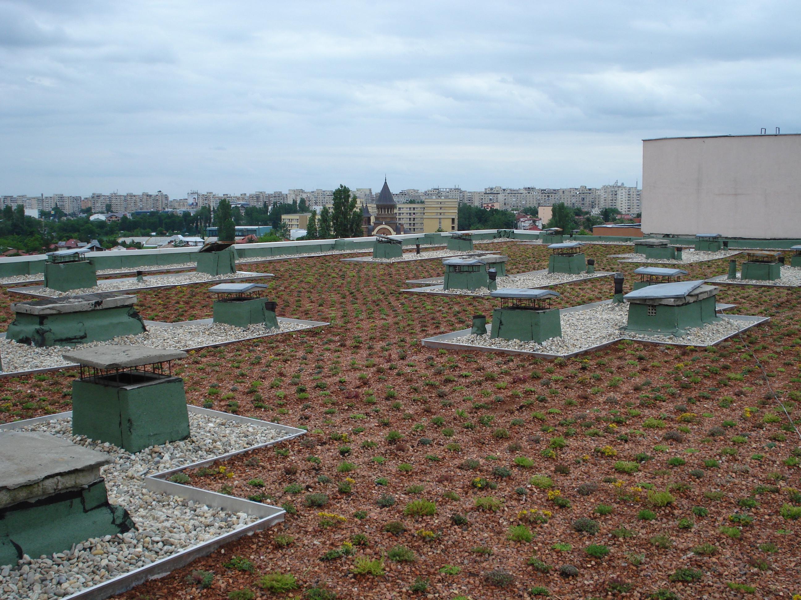 Acoperis verde pe acoperis existent Bucuresti SIMACEK Gardening - Poza 3