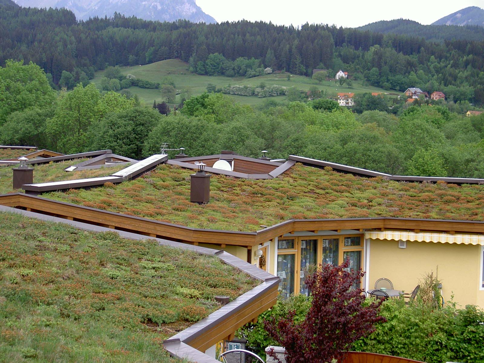 Acoperisuri Verzi  SIMACEK Gardening - Poza 1