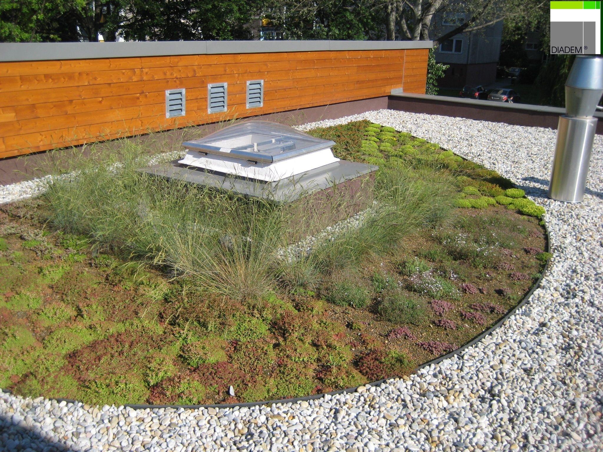Acoperisuri Verzi  SIMACEK Gardening - Poza 8
