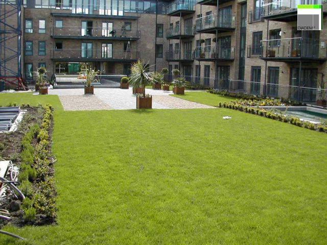 Acoperisuri Verzi SIMACEK Gardening - Poza 4