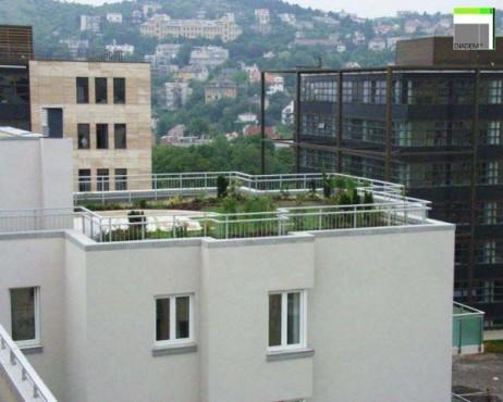 Acoperisuri Verzi SIMACEK Gardening - Poza 10