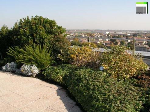 Acoperisuri Verzi SIMACEK Gardening - Poza 14