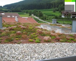 Acoperisuri Verzi DIADEM ® SIMACEK Gardening ofera 4 sisteme pentru acoperisurile verzi semiintensive cu vegetatie compuse din gazon, plante perene, arbusti si pentru acoperisurile verzi extensive, intensive, superintensive;