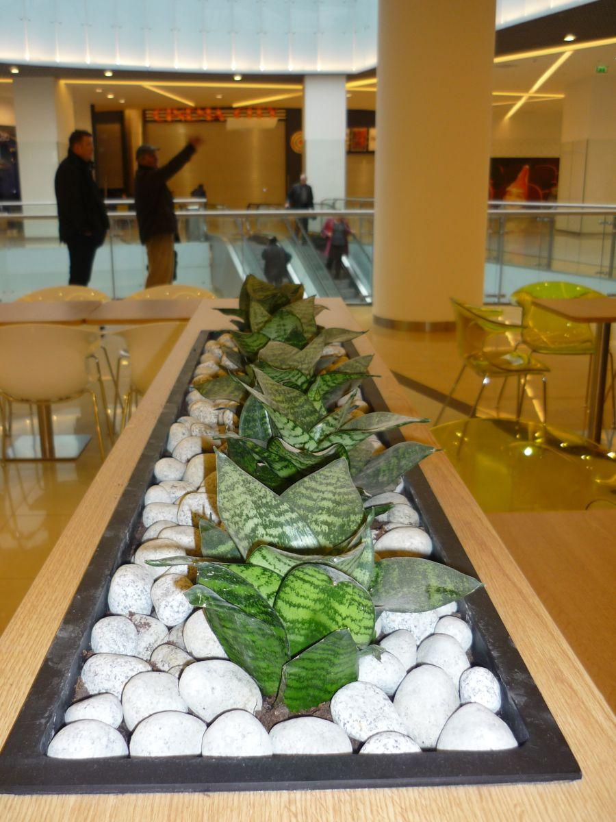 Amenajare centru comercial  - Poza 2