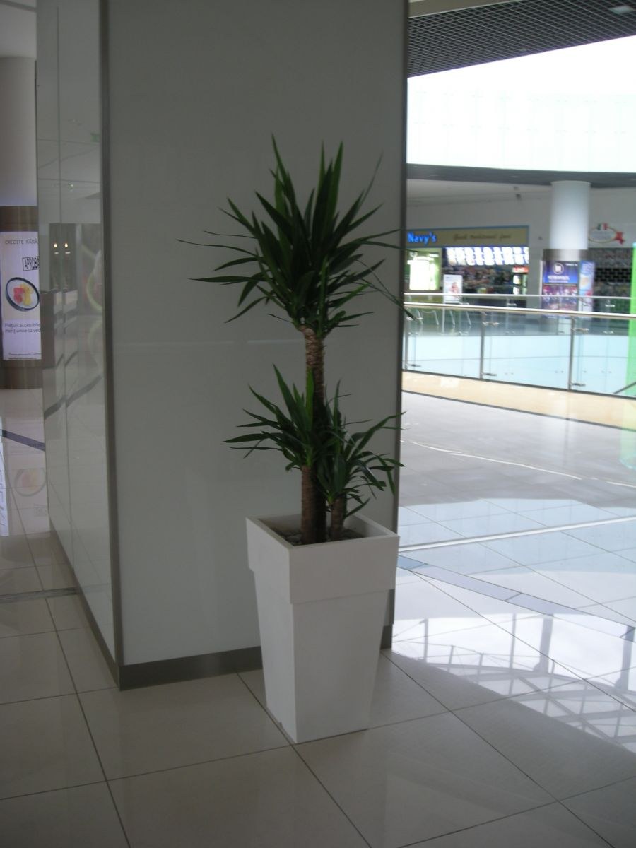 Amenajare centru comercial  - Poza 5