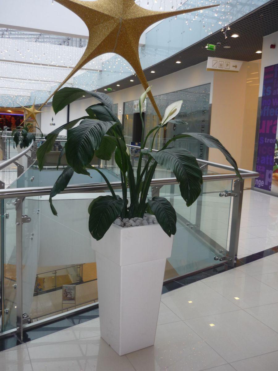 Amenajare centru comercial  - Poza 9
