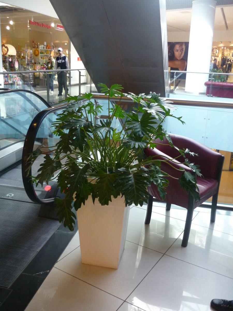 Amenajare centru comercial  - Poza 12