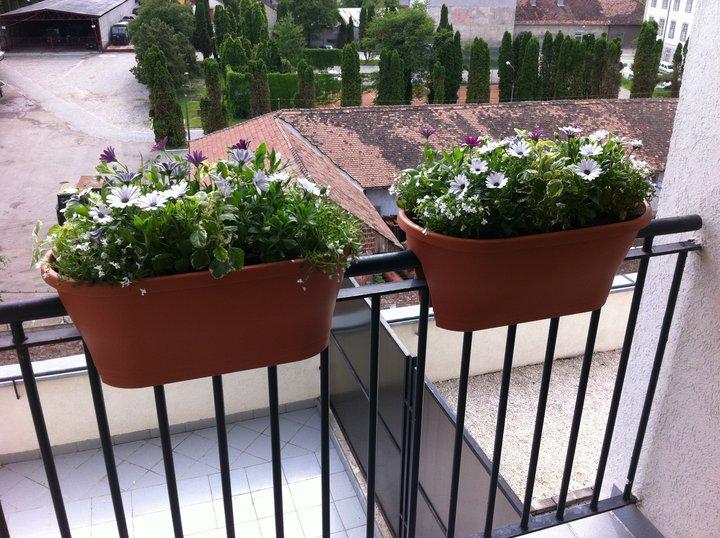 5 jardiniere pentru balcon poza 3