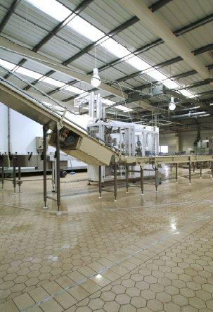 Pardoselala ceramica vibrata - Industria alimentara PLACARI FAINE - Poza 5