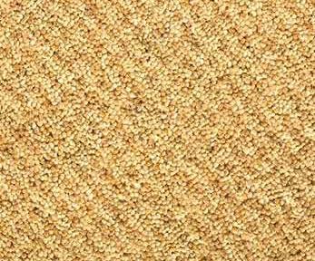 Mocheta din fibre naturale - SIMPLY RYALUX RYALUX - Poza 2