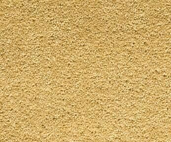 Mocheta din fibre naturale - WILLIAM CLASSIC RYALUX - Poza 3