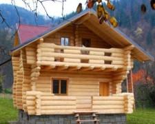 Tratamente pentru lemn impotriva daunatorilor biologici BOESENS FABRIKKER